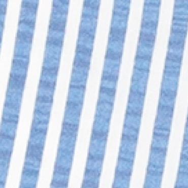 Blue-PAN007
